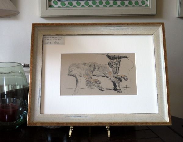 Irish Wolfhound - lying against sofa - IW A3 - 1930's print by Cecil Aldin